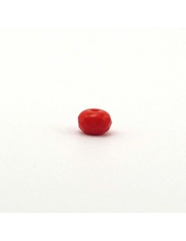 Potiron rouge 4x6 mm